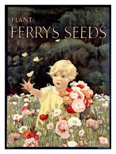 Vintage advertising for Ferry's Seeds.  Child in a field of flowers