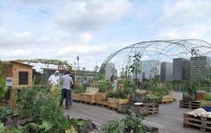 Mur végétal, serre connectée, aquaponie (culture de végétaux associée à de l'élevage de poissons), poulailler… Jusqu'à fin du mois de...