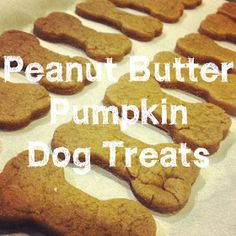 Homemade Dog Treats (only 4 ingredients)  *** Hubby and I made these tonight for our 3 kids [a Great Dane, a Siberian Husky/German Shepard mix, and Chihuahua/Manchester Terrier mix] and man did they love them?!! Only thing we changed was instead of putting in 2/3 cup pure pumpkin we used the whole can which was 15 ounces.