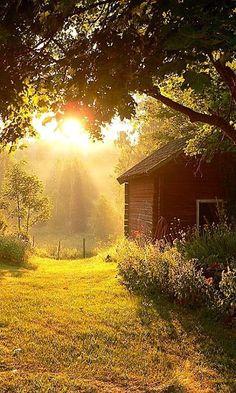 Летняя избушка.  Лето | Домик | Солнце