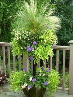 Basket Column -    Basket Column - coral and purple verbena, lacy sweet potato vines (ipomoea), pale yellow million bells (petunias), and a centerpiece of annual grass