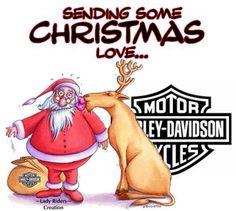 - Live to Ride, Ride to Live. Harley Davidson Shop, Harley Davidson Posters, Motorcycle Logo, Motorcycle Quotes, Hd Motorcycles, Harley Davidson Motorcycles, Emoji, Cute Kids Photos, Supergirl Superman