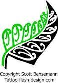 silver fern - Recherche Google