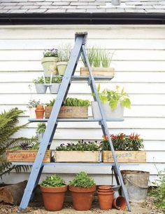 scala fioriera per le piante officinali