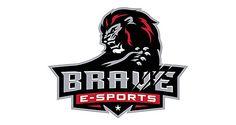 Brave eSports: http://www.playmagazine.info/brave-esports/