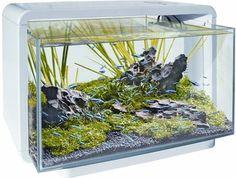 superfish home 60 - Google zoeken