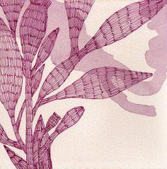 Francesca Lancisi Watercolor