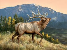 A593668566: Ridgeline - Elk Painting by Rosemary Millette