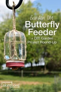 how to make a diy butterfly feeder for your garden - Homemade Hummingbird Food
