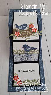 Scrapbooking, Scrapbook Cards, Fancy Fold Cards, Folded Cards, Funny Birthday Cards, Birthday Humorous, Birthday Sayings, Birthday Images, Bird On Branch