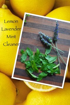 Lemon Lavender Mint All Purpose Cleaner: Add 2 to 4 tablespoons of Castile soap and 10 drops of lemon essential oil to a large container. Fill with 1 gallon of hot water and stir to mix. Add 1/8 cup of vinegar. Now, add Lavender Essential Oil and Peppermint Essential Oil (amounts depend on scent preference). Pour in spray bottles to clean walls, counters, etc. Pour in a mop bucket to clean floors.