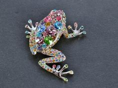 rainbow frog pin