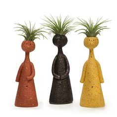 Livetrends 3 Count-Pack Air Plant (Mixed) In Planter Face Planters, Ceramic Planters, Clay Planter, Concrete Planters, Garden Bulbs, Planting Bulbs, Air Plant Display, Plant Decor, Air Plants