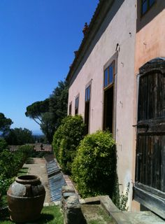 """La Limonaia"" tillhörande Villa Gamberaia i Toscana."