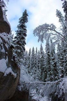 http://www.naturehealsthesoul.com/2014/01/maligne-river-canyon-2.html