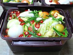 여름 배추 동치미/짜릿한 배추 물김치 Korean Dishes, Korean Food, Asian Recipes, Ethnic Recipes, Kimchi, No Cook Meals, Cooking Tips, Potato Salad, Cabbage