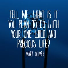 """Tell me, what is it you plan to do with your one wild and precious life?"" —…"