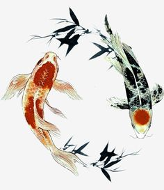 Koi Art, Fish Art, Chinese Style, Chinese Art, Chinese Design, Koi Painting, Koi Fish Tattoo, Fish Drawings, Red Fish