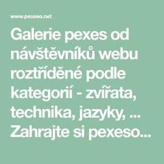 Galerie pexes od návštěvníků webu roztříděné podle kategorií - zvířata, technika, jazyky, ... Zahrajte si pexeso online. Stáhněte si pexeso z galerie, vytiskněte a hrajte.