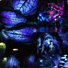 A look inside Na'vi River Journey! The attraction is just BEAUTIFUL! #WaltDisneyWorld #AnimalKingdom #Avatar #Pandora #VisitPandora #WDW #DisneyWorld #instadisney #disneygram #igers_orlando #igers_disney #themepark #themeparks