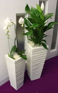 Textured Stack displays in an indoor office setting with live white flowering Spathifyllum plants. See more here http://officelandscapes.co.uk/