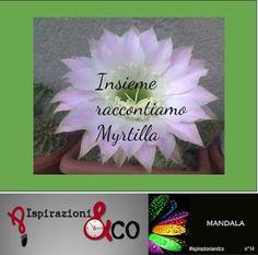 Insieme Raccontiamo 6 - Mandala - Il finale di Juan Segundo