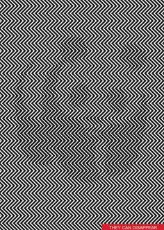 Une illusion d'optique bluffante... et militante !