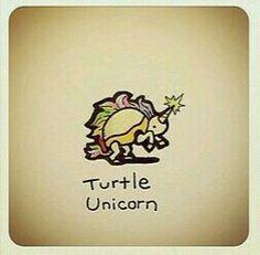 Turtle Unicorn @turtlewayne
