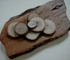 WOODLAND WALL ART  Organic Wood Sculpture  by BlythHouseCreations, $45.00