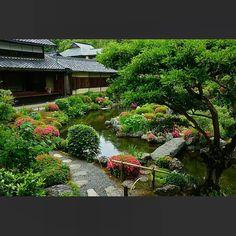 2016.5/29 等持院  ちょっとした森のような等持院の庭  水が流れていて木の影があるだけで、ずいぶん涼しく感じます。  #京都 #等持院 #皐月 #サツキ #さつき #初夏 #新緑 #御寺 #お寺 #寺 #そうだ京都行こう  #JAPAN #Kyoto #Tojiin #azalea #FreshGreen #SproutingGreen #icu_japan #ig_japan #ig_nihon #ig_nippon #team_jp_ #wu_japan #ptk_japan #temple #GARDEN
