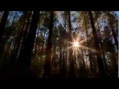 Mundos Infinitos - Rumi  (voz: Letícia Sabatella)
