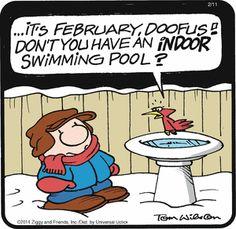 Ziggy comic for Feb/11/14
