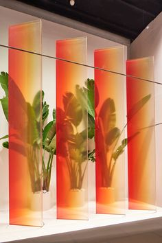 sabine marcelis transforms milan's rinascente with plexiglass, resin and plant installations Display Design, Store Design, Architecture Restaurant, Sustainable Architecture, Decoration Vitrine, Plafond Design, Milan Design, Green Life, Commercial Design