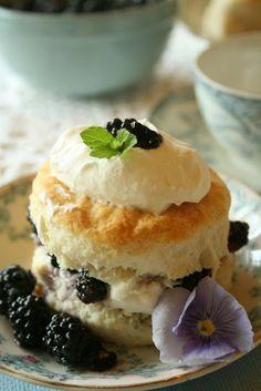 Blueberry shortcake, lovely presentation