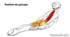 Gainage haut du dos lire la suite / http://www.sport-nutrition2015.blogspot.com