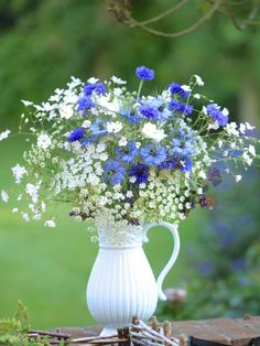 This week I am posting about my home grown flowers in support of British Flowers Week. Today I am focusing on some of the lovely hardy annuals that can be bought from British growers throughout the summer. Beautiful Flower Arrangements, Floral Arrangements, Beautiful Flowers, Meadow Flowers, Cut Flowers, Purple Flowers, Spring Flowers, Blue Bouquet, Floral Bouquets