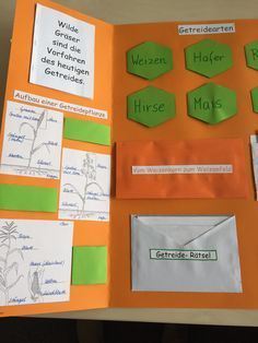 Lapbooks in der Grundschule: Getreide