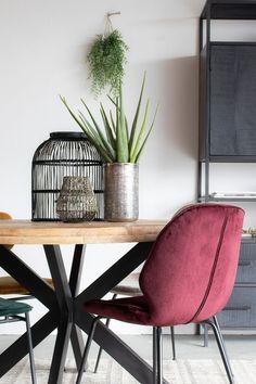 Moderne Eetkamerstoel Lisss Bordeauxrood   Zen-Lifestyle   Gratis thuisbezorgd! Velvet Shop, Entryway Bench, Modern Design, Lifestyle, Furniture, Home Decor, Velvet, Entry Bench, Hall Bench