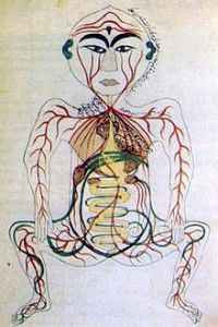 Persia,Digest,System,Century,Medicine Iranian Historical Photographs Gallery:Persia: Digestive System as perceived in Century Medical Art, Medical History, Human Digestive System, Horrible Histories, Virgo Moon, Astrology Numerology, Vintage Medical, Medical Illustration, Ancient Art