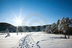 Winter landscape with ski tracks