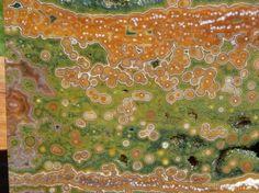 TCR Orbicular Ocean Jasper Agate lapidary Slab Magnificent Colors Orbs 148 Gram | eBay