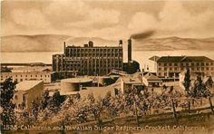 1907-15 Printed PC Unposted California & Hawaiian Sugar Refinery Crockett CA