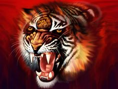 Iowa — IA ꕥ> Mozilla Thunderbird mail support Number - Wallpaper Wildlife Wallpaper, Tiger Wallpaper, Images Wallpaper, Animal Wallpaper, Nature Wallpaper, Angry Tiger, Pet Tiger, Tiger Art, Hd Wallpapers 3d