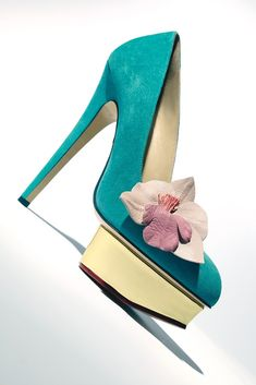 Charlotte Olympia's suede and calfskin pump.  [Photo by David Sawyer]