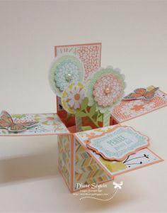 Spring time card in a box stampin up sale-a-bration 2014!