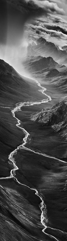Utterly stunning photography by Sebastiao Salgado  Kafu National Park, Zambia [deer], 2010,