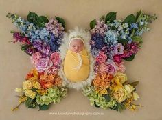 Rainbow butterfly baby by Luisa Dunn Photography