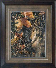 Autumn Eyes Wildlife Paintings, Wildlife Art Prints by Artist Collin Bogle Wolf Love, Beautiful Creatures, Animals Beautiful, Cute Animals, Wildlife Paintings, Wildlife Art, Wolf Pictures, Animal Pictures, Tier Wolf