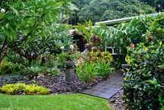 Outdoor Living: Tropical Tabu - Outdoor Living – Tropical Taboo Queensland Homes Lots of great pics on the site! Tropical Garden Design, Tropical Backyard, Tropical Landscaping, Landscaping With Rocks, Landscaping Plants, Tropical Plants, Tropical Gardens, Garden Plants, Cancun