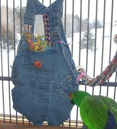 Parrot foraging toys provide an opportunity for your birds to work for food DIY